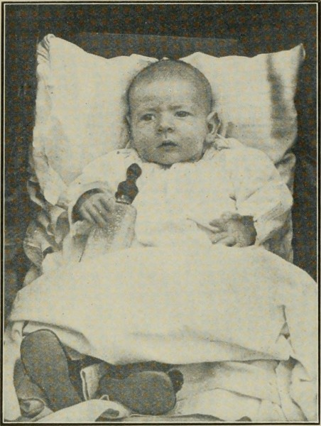 "Image from page 705 of ""Gleanings in bee culture"" (1874)"