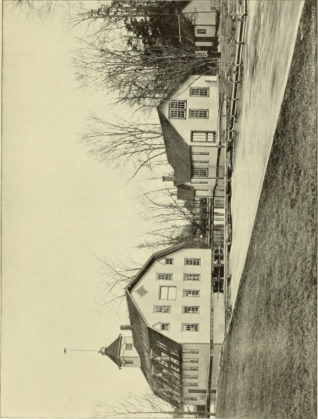 """Image from page 236 of """"Annual report of the Commissioners of Fisheries, Game and Forests of the State of New York"""" (1895)"""