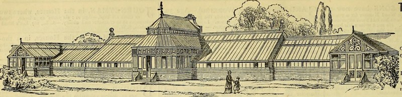 "Image from page 373 of ""The Gardeners' chronicle : a weekly illustrated journal of horticulture and allied subjects"" (1874)"