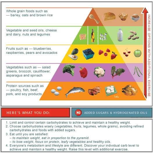 Healthy Weight Loss Program Best Diet Solutions Program