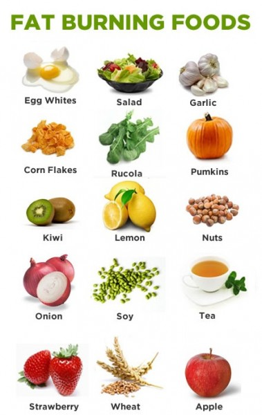 Fat burning foods 99