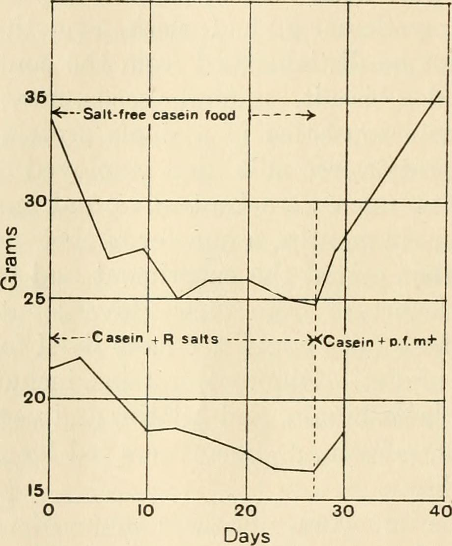 "Image from page 219 of ""The Journal of experimental zoology"" (1913)"